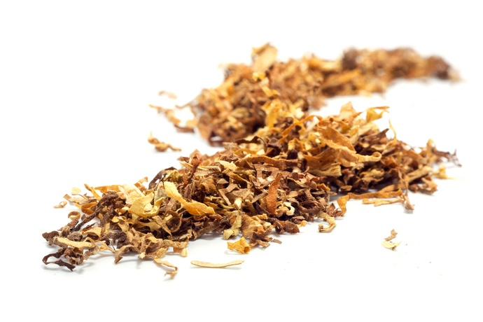 Loose brown tobacco on white background